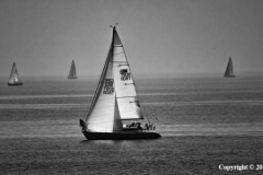 Perfect-Sailing-Day-by-Jan-Harris