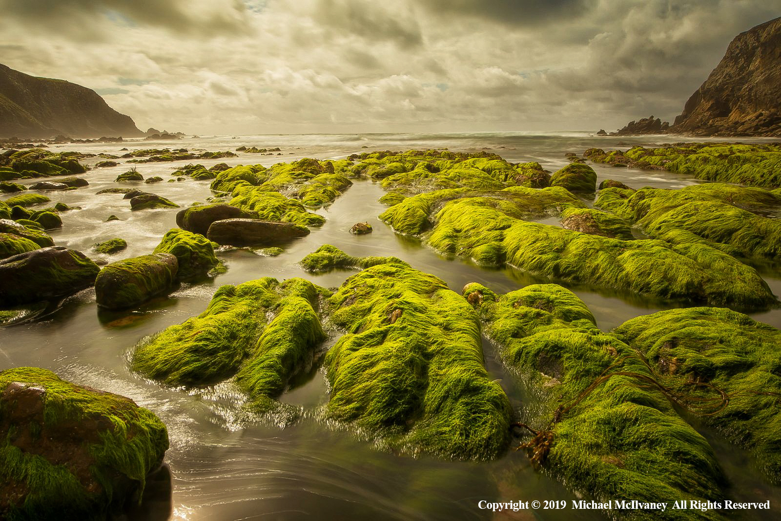 Green Fingers, County Mayo by Michael McIlvaney