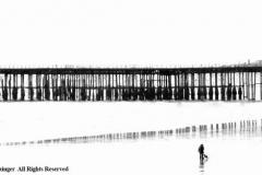 Seeking-Solace-by-Pauline-Grainger