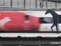 Iron Horses by Ruth Seadon