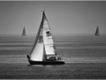 Perfect Sailing Day - Janice Harris