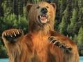 Alaskan-Surprise