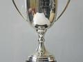 Rob Downes Award