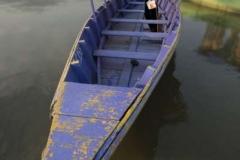 Phewa-Boats